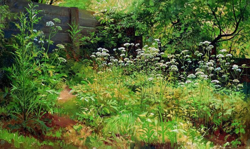 -Ground-grass. Pargolovo 1884-1885 35h58, 5. Ivan Ivanovich Shishkin