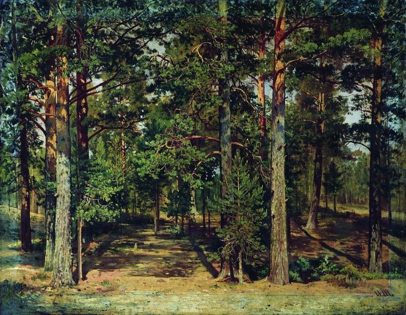 Pine forest 45h59. Ivan Ivanovich Shishkin