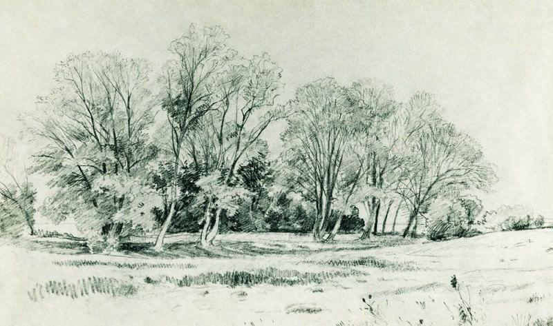 Trees in the field. Bratsevo 1866 26, 5h42, 8. Ivan Ivanovich Shishkin
