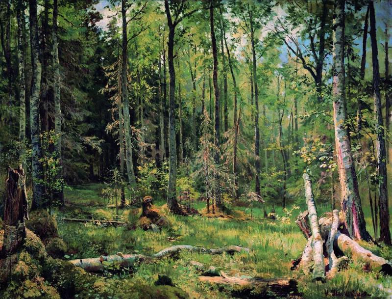 Mixed forest (Shmetsk near Narva) 1888 83h101. Ivan Ivanovich Shishkin