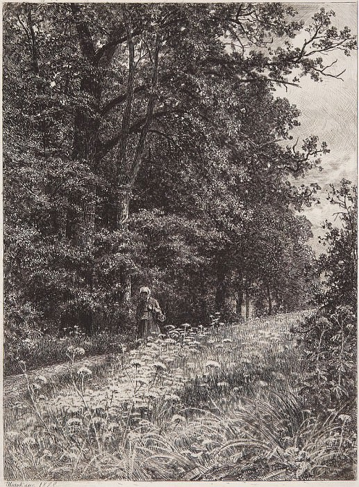 On the forest boundary line. 1878 23h17. Ivan Ivanovich Shishkin