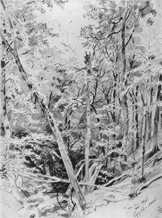 Suuch Khan. Crimea 1879 31, 8h22, 9. Ivan Ivanovich Shishkin