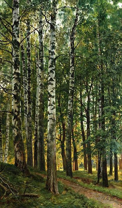 Birch Grove 1896 95. 5h70. Ivan Ivanovich Shishkin
