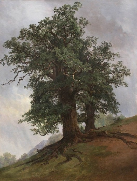 Старый дуб 1866. Иван Иванович Шишкин