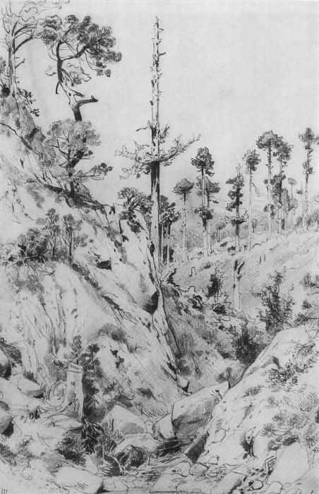 Crimean kind. At Yalta. 1879 45, 6h31. Ivan Ivanovich Shishkin