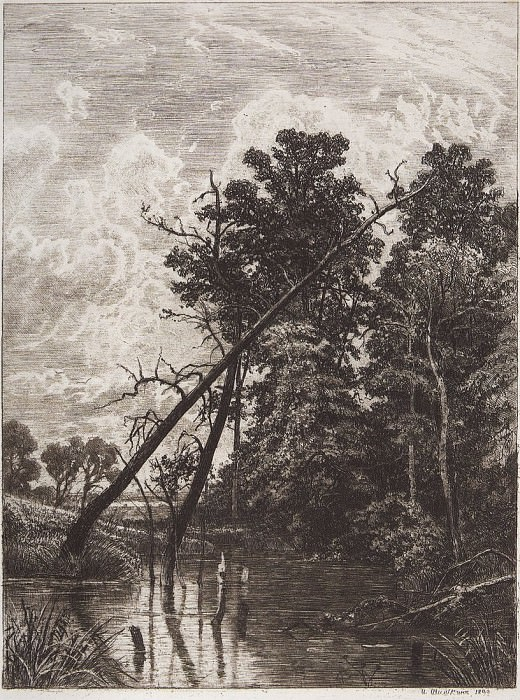 Swamp. 1892 32h24. Ivan Ivanovich Shishkin