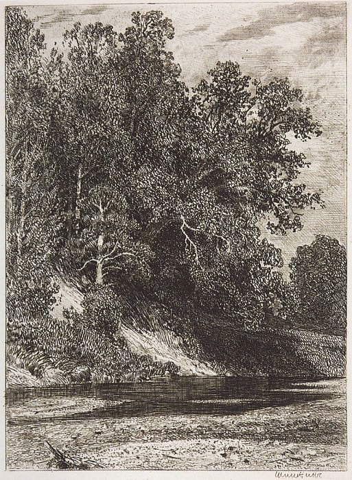 Forest on a steep bank. 1877 16, 1h12. Ivan Ivanovich Shishkin