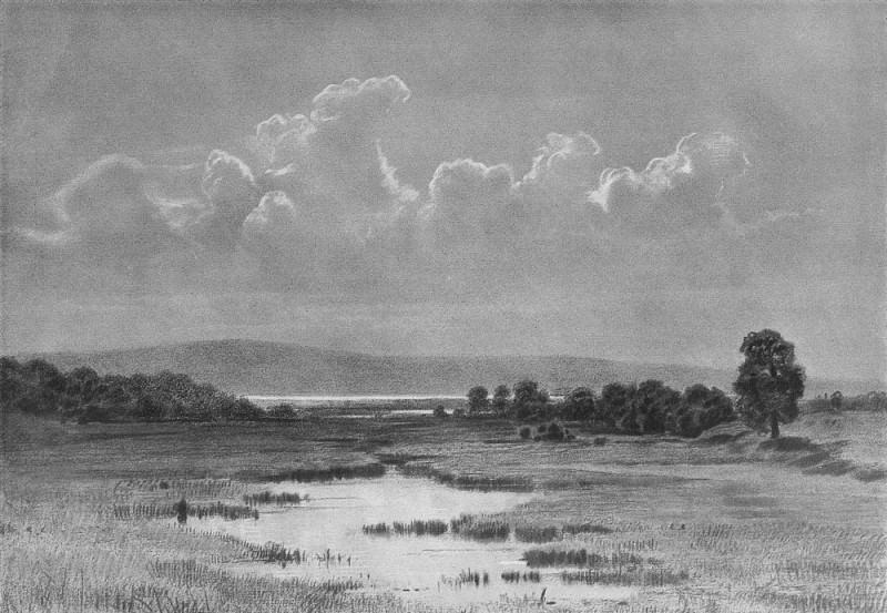 1884 Bog Paper. charcoal, chalk 46. 5h62. Ivan Ivanovich Shishkin