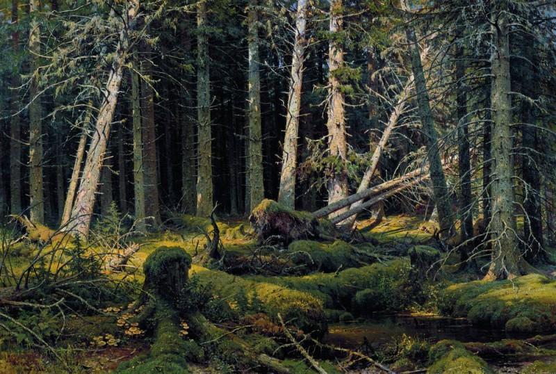 deadfall 1888 139h201. Ivan Ivanovich Shishkin