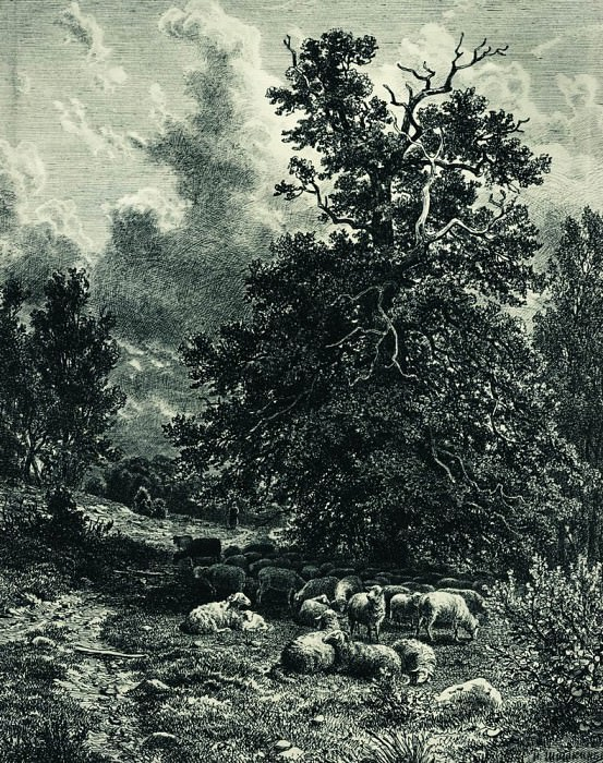 herd of sheep on the edge of the forest 1860 38, 3h29, 5. Ivan Ivanovich Shishkin