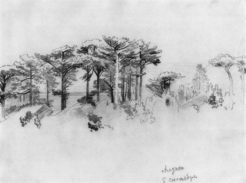 Pines over the sea. Alupka 1879 24, 6h33, 5. Ivan Ivanovich Shishkin