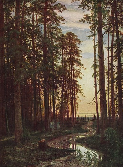 Evening in a pine forest 116h87 1875. 7. Ivan Ivanovich Shishkin