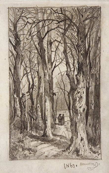 Лесная дорожка. 1863 16, 4х10. Иван Иванович Шишкин