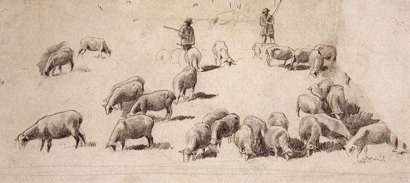 herd of sheep. 1862-1864 9, 6h21, 5. Ivan Ivanovich Shishkin