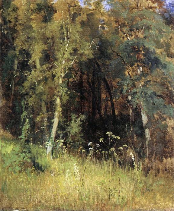 1874 Forest thicket 70, 3h57, 3. Ivan Ivanovich Shishkin
