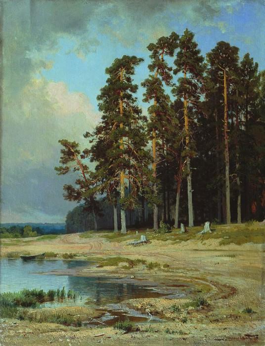 Forest 1885 45. x 35. Ivan Ivanovich Shishkin
