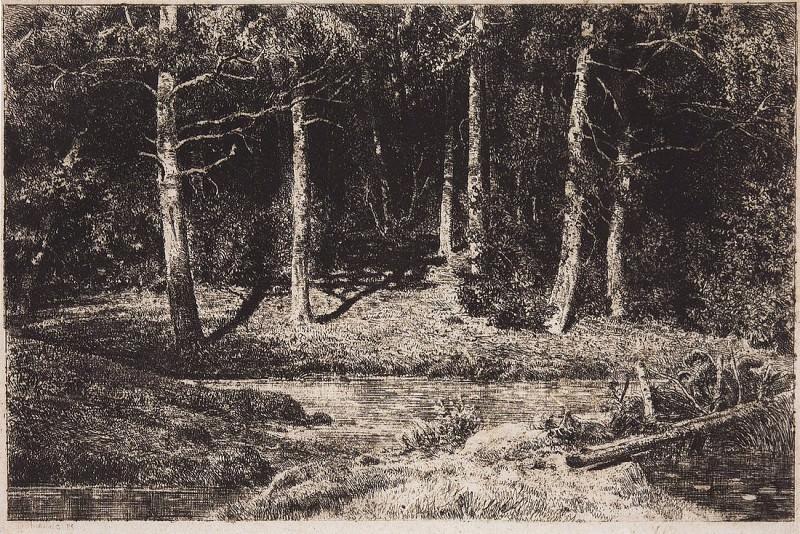 Berezniak. 1885 21, 5h30, 8. Ivan Ivanovich Shishkin