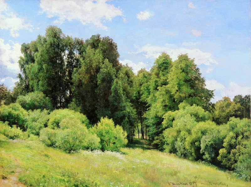 Forest Glade (Polyanka) 1897 81 5h109. Ivan Ivanovich Shishkin