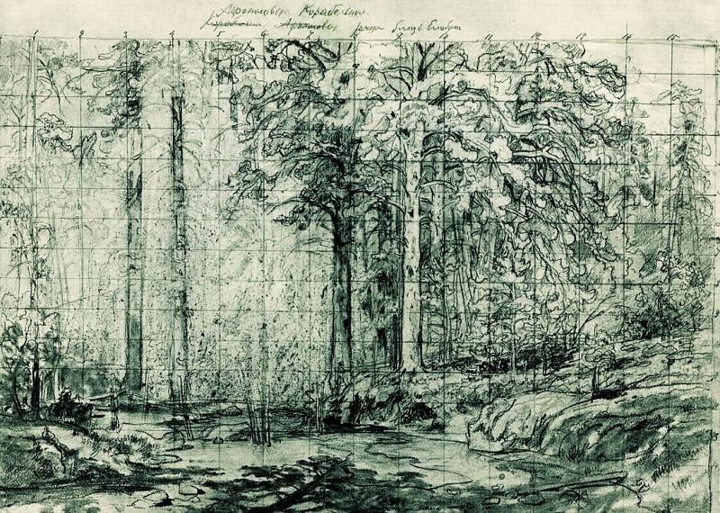 Ship grove. 1897. Sketch. Ivan Ivanovich Shishkin