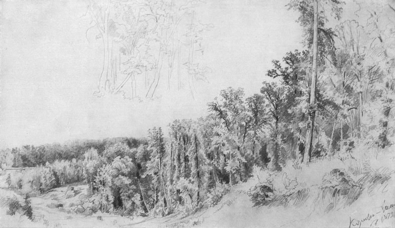 Ravine in Kozlovka-Preserve 1873 26, 3h60, 4. Ivan Ivanovich Shishkin