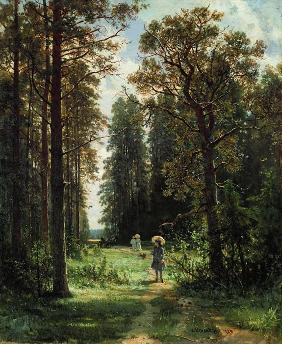 track in the woods 1880 59x48. Ivan Ivanovich Shishkin