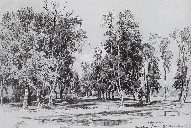 Зеленина роща. 1871 29х43. Иван Иванович Шишкин