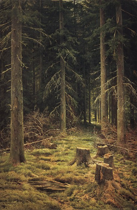 Coniferous Forest 144h98 1873, 5. Ivan Ivanovich Shishkin
