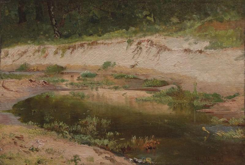 Forest Stream 1895. Etude. Ivan Ivanovich Shishkin