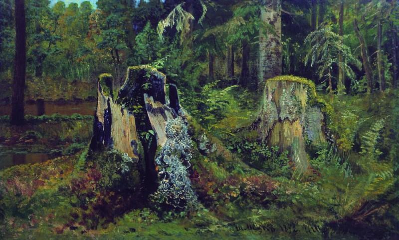 Пейзаж с пнём 1892 36. 8х60. Иван Иванович Шишкин