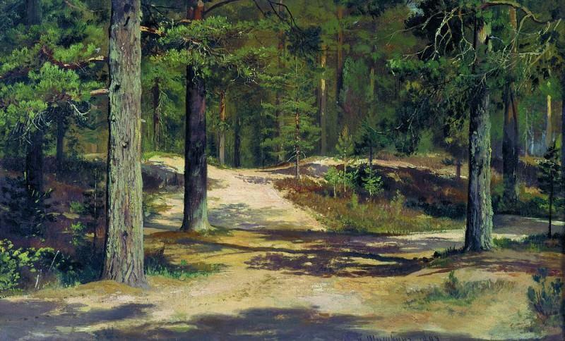 Сосновый лес 1889 36х58. Иван Иванович Шишкин