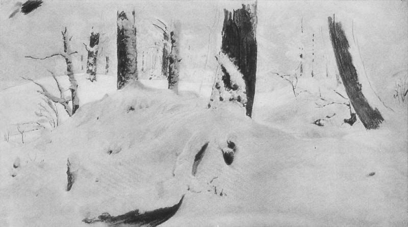 Лес под снегом 1890-е. Бумага, уголь, мел. 24х45. Иван Иванович Шишкин