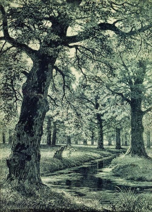 oak grove. 1893 51h40. Ivan Ivanovich Shishkin