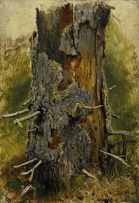 Кора на сухом стволе 1889-1890 26х17. 9. Иван Иванович Шишкин