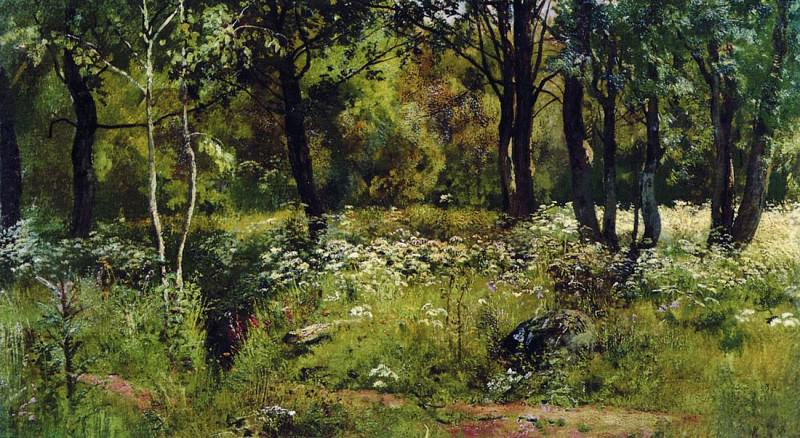 Forest Glade. Late 1880 - early 1890s, 34, 6h59, 6. Ivan Ivanovich Shishkin