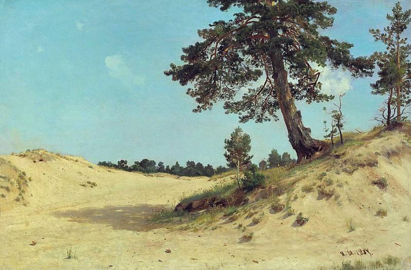 Сосна на песке 1884 69х105. Иван Иванович Шишкин