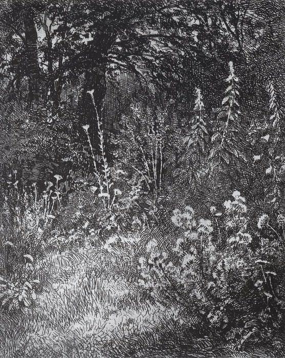 Лесные цветы. 1873 10х9. Иван Иванович Шишкин