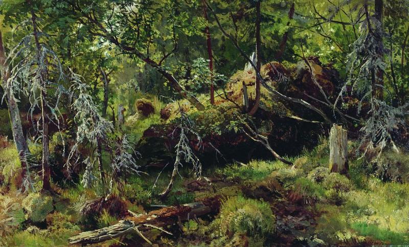 Branches. Etude 37, 5h61. Ivan Ivanovich Shishkin