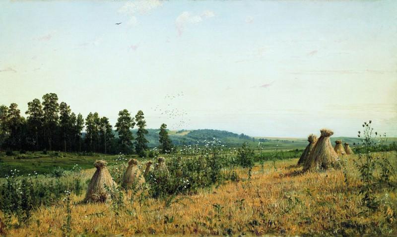Сжатое поле. Полесский пейзаж 1884 71х117. Иван Иванович Шишкин