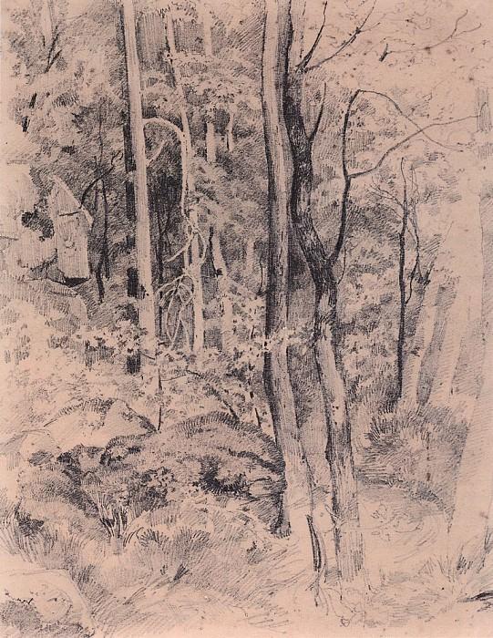 Forest. Start 1870 23, 8h18, 4. Ivan Ivanovich Shishkin