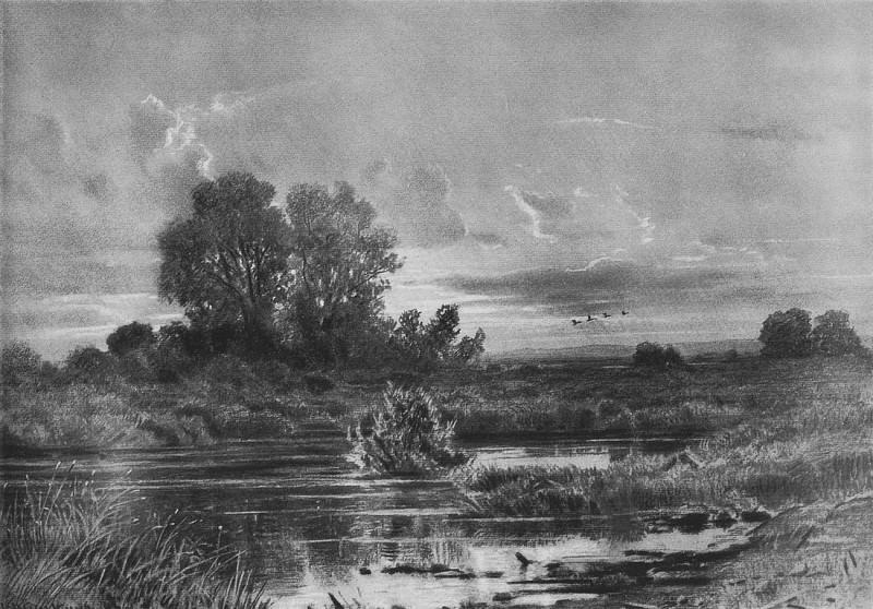 overgrown pond. 1884 47h61. 2. Ivan Ivanovich Shishkin