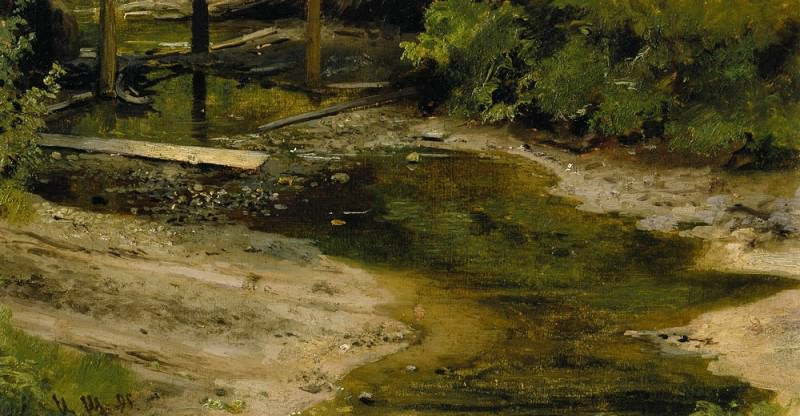 Forest River 1895 18h35. Ivan Ivanovich Shishkin