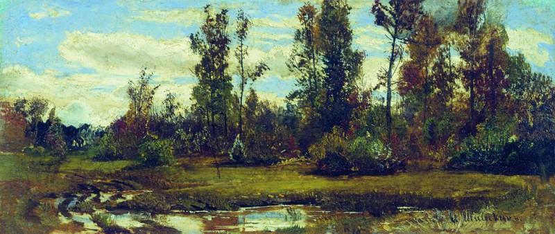 Озеро в лесу 20х52. Иван Иванович Шишкин