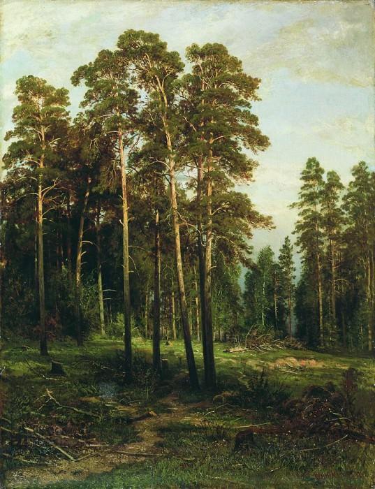 Сосновый лес 110х85. Иван Иванович Шишкин