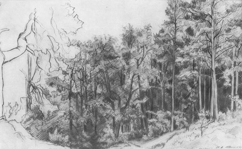 Deciduous Forest 1873 30, 6h45, 9. Ivan Ivanovich Shishkin