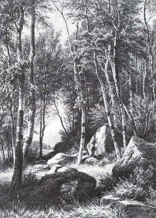 On the edge of a birch grove. Balaam. 1859-1860 44, 4h37, 5. Ivan Ivanovich Shishkin