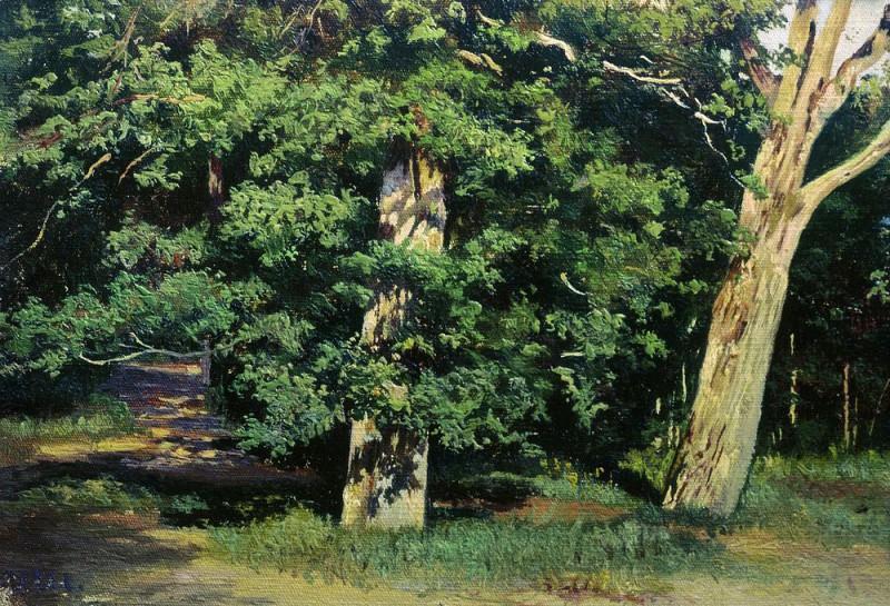Trees 17. 9h26. Ivan Ivanovich Shishkin