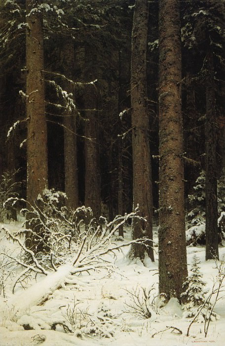 spruce forest in winter 1884 140h95. Ivan Ivanovich Shishkin