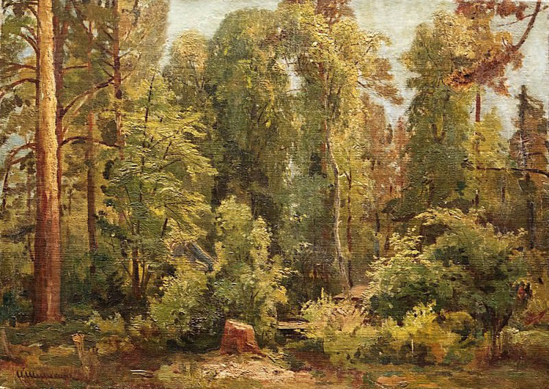 In the woods. Ivan Ivanovich Shishkin