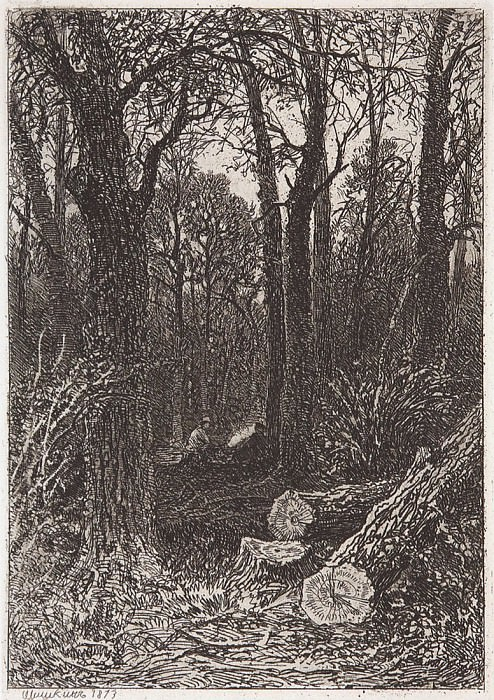 On felling. 1873 15. 4x10, 7. Ivan Ivanovich Shishkin