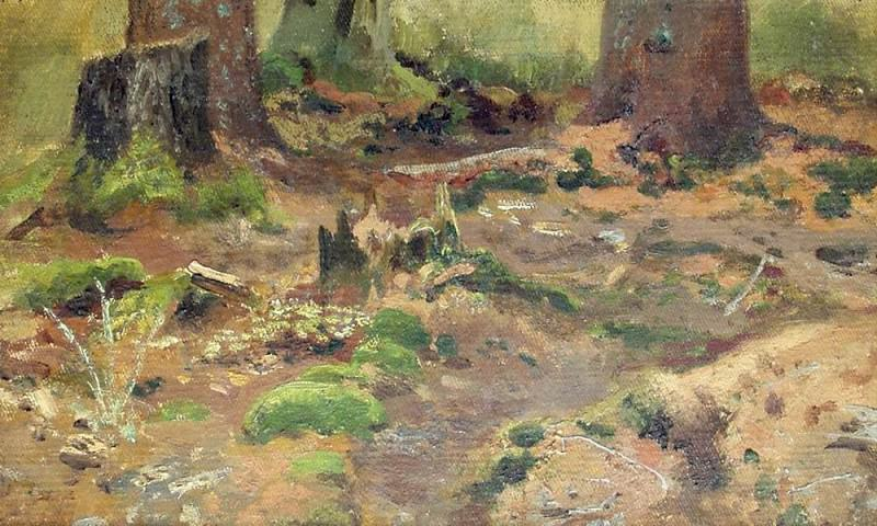 Sketch. Forest 17, 5h27, 1. Ivan Ivanovich Shishkin